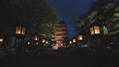 ライトアップ寺院