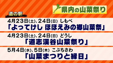 【0013】県内の山菜祭り