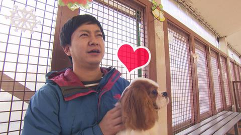 犬嫌い克服-(3)