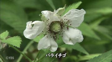 190921_115636_18.jpg